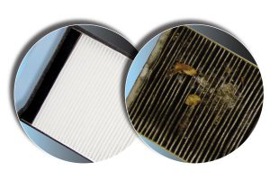picture of a cabin air filter
